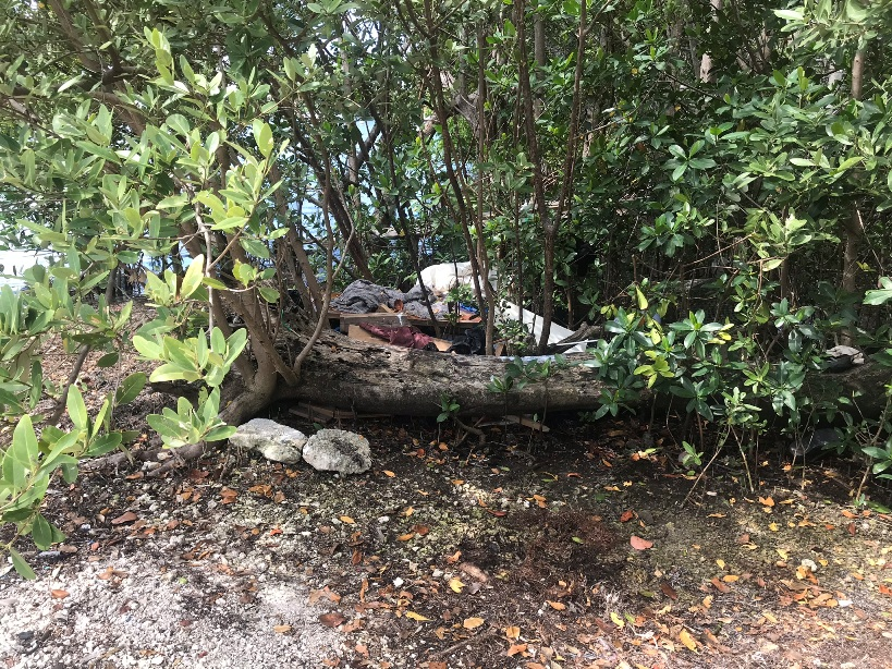 Kennedy-Park-Clean-Up-7